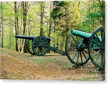 Cannons I Canvas Print by Anita Lewis