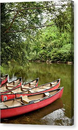 Canoeing The Macal River In Jungle Area Canvas Print