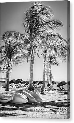 Canoes And Palms - Higgs Beach Key West - Black And White Canvas Print by Ian Monk