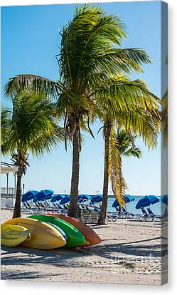 Canoes And Palms - Higgs Beach Key West  Canvas Print by Ian Monk
