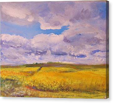Canola And Clouds Canvas Print by Helen Campbell