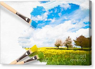 Canola Field In Summer Canvas Print