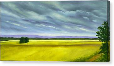 Canola Canvas Print by Jo Appleby