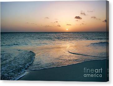 Can't You Just Feel It? Canvas Print
