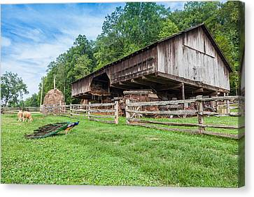 Cantilever Barn Canvas Print by Melinda Fawver