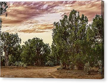 Canyon De Chelly Campground Navajo Nation Canvas Print by Bob and Nadine Johnston