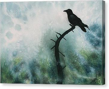 Canyon Denizen Or Torrey Pine Remains With Raven Canvas Print