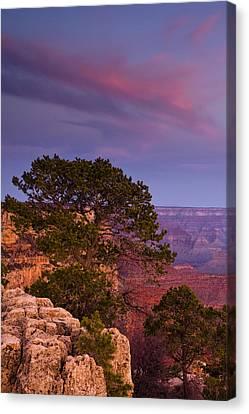 Canyon Morning Canvas Print