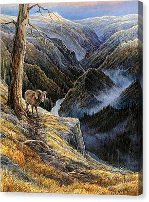 Canvas Print featuring the painting Canyon Solitude by Steve Spencer