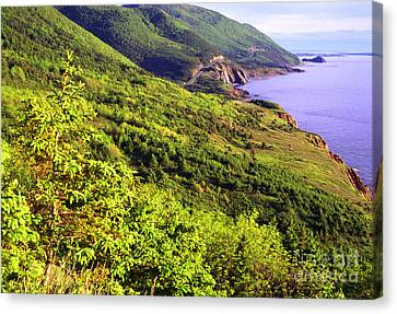 Cape Breton Highlands National Park Canvas Print by Thomas R Fletcher