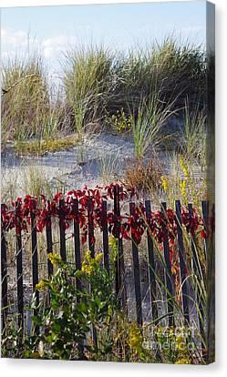 Cape Charles Autumn Canvas Print by Tannis  Baldwin