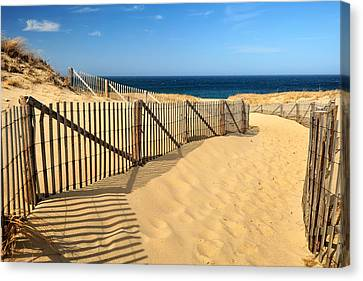 Canvas Print featuring the photograph Cape Cod Beach by Mitchell R Grosky