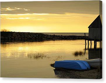 Cape Cod Delight Canvas Print by Luke Moore