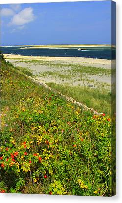Chatham Canvas Print - Cape Cod Lighthouse Beach Chatham by John Burk