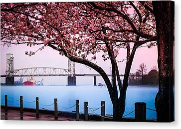 Riverscape Canvas Print - Cape Fear Of Wilmington by Karen Wiles