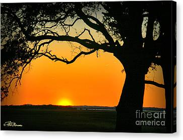 Cape Fear Sunset 2 Canvas Print by Phil Mancuso