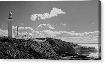 Cape Green Light Momochrome Canvas Print by David Rich