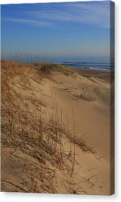 Cape Hatteras Dunes-outer Banks North Carolina Canvas Print