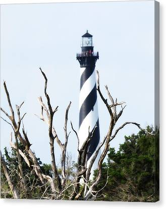 Cape Hatteras Lighthouse 2014 20 Canvas Print by Cathy Lindsey