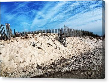 Cape May Dunes Canvas Print