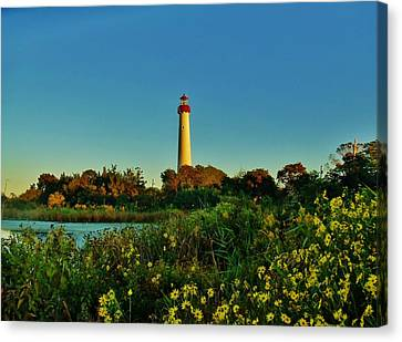 Cape May Lighthouse Above The Flowers Canvas Print by Ed Sweeney