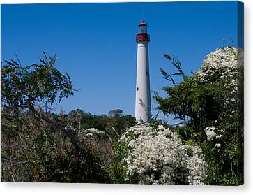 Canvas Print featuring the photograph Cape May Lighthouse by Greg Graham