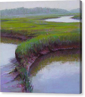 Cape Morning Canvas Print by Ed Chesnovitch