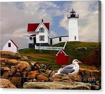 Nubble Lighthouse Canvas Print - Cape Neddick Lighthouse Maine by Nick Zelinsky