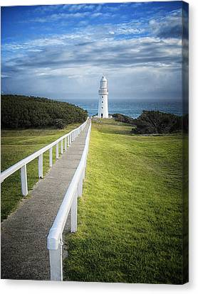 Cape Otway Canvas Print by Kim Andelkovic