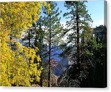 Cape Royal Grand Canyon Canvas Print by Ed  Riche