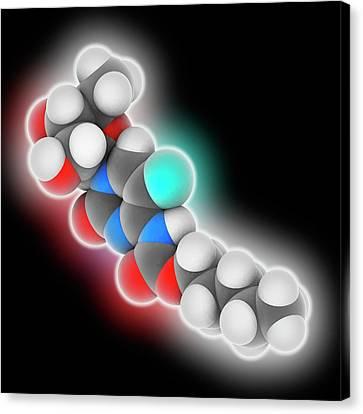 Capecitabine Drug Molecule Canvas Print by Laguna Design