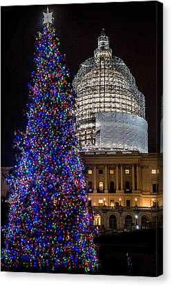 Capitol Christmas Tree 2014 Canvas Print