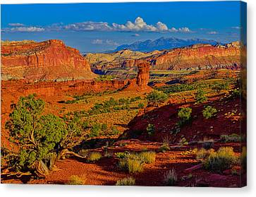 Canvas Print featuring the photograph Capitol Reef Landscape by Greg Norrell