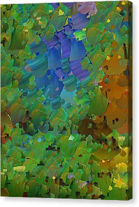 Capixart Abstract 11 Canvas Print by Chris Axford