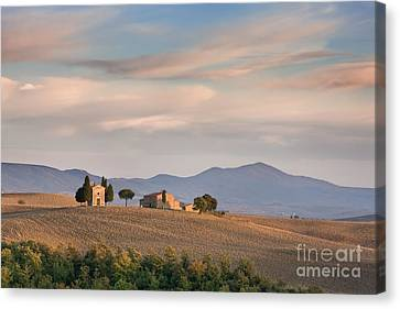 Shades Of Tuscany Canvas Print by Rod McLean