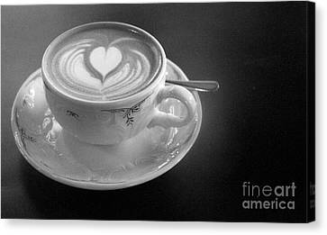 Cappuccino  Canvas Print by Louise Fahy