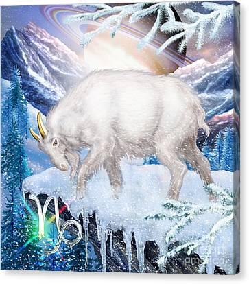 Capricorn Canvas Print by Ciro Marchetti