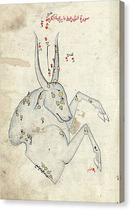 Capricornus Constellation Canvas Print