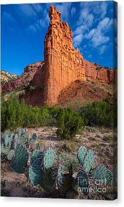 Caprock Canyon Wall Canvas Print by Inge Johnsson