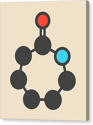 Caprolactam Molecule Canvas Print by Molekuul