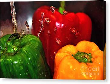 Capsicum In The Wash Canvas Print by Kaye Menner