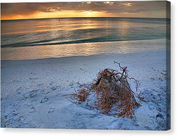 Captiva Sunset Iv Canvas Print by Steven Ainsworth
