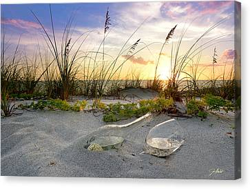 Wine Glass Canvas Print - Captiva Sunset by Jon Neidert