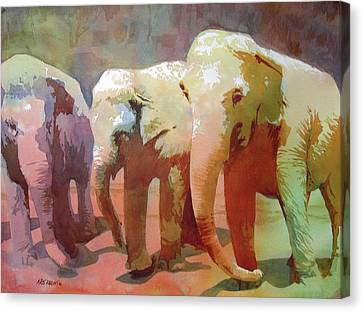 Trio Canvas Print - Captive Audience by Kris Parins
