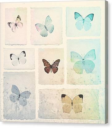 Captured Beauty Canvas Print