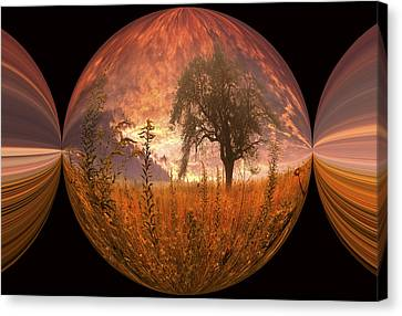 Captured Flame Canvas Print by Debra and Dave Vanderlaan
