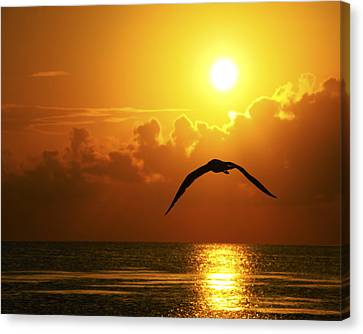 Capturing Paradise Canvas Print