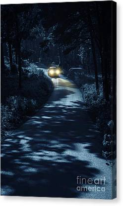 Car In The Woods Canvas Print