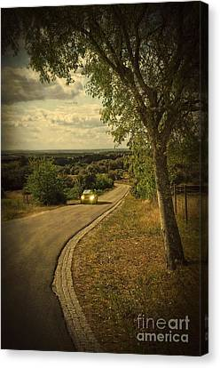 Car On Road Canvas Print by Carlos Caetano