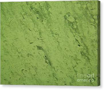 Car Wash Kaleidoscope Green Canvas Print